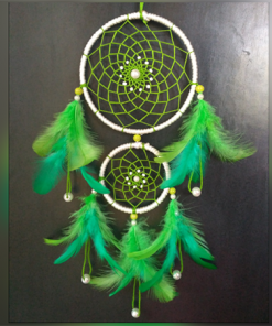 Go Green Dreamcatcher